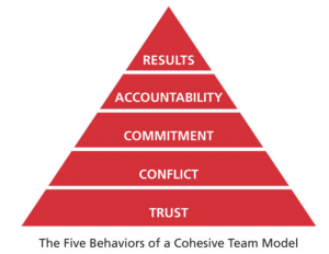 5 Behav cohesive team model